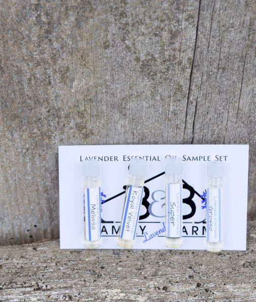 Lavender Essential oil sample card
