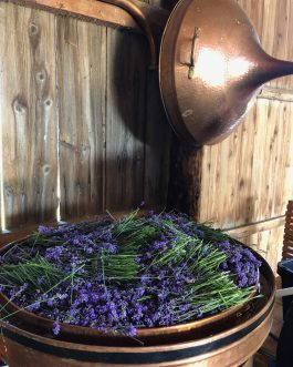 Full of Lavender Copper Alembic Still