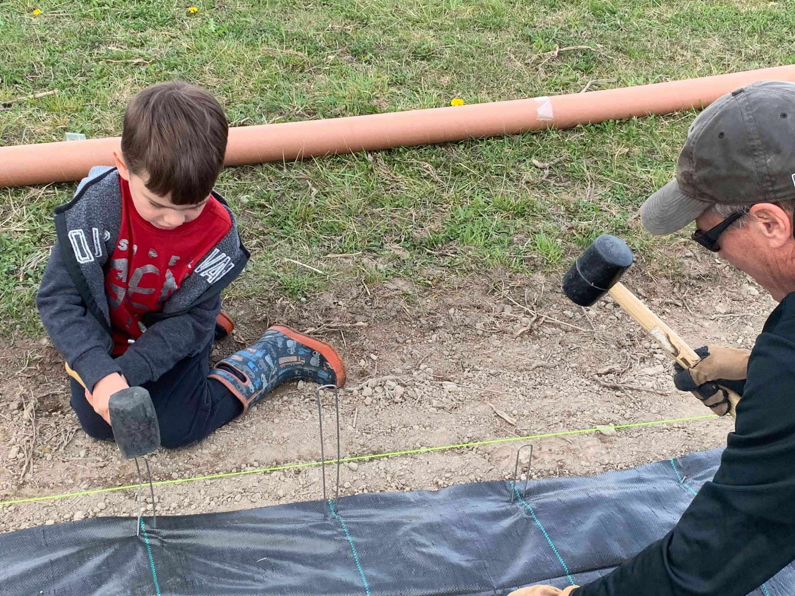 Sawyer and Keith Stapling Ground Cover