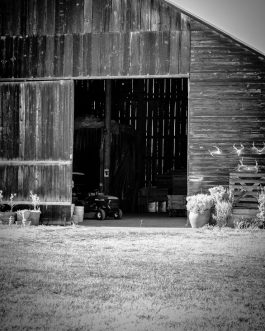 Black and White B&B Barn