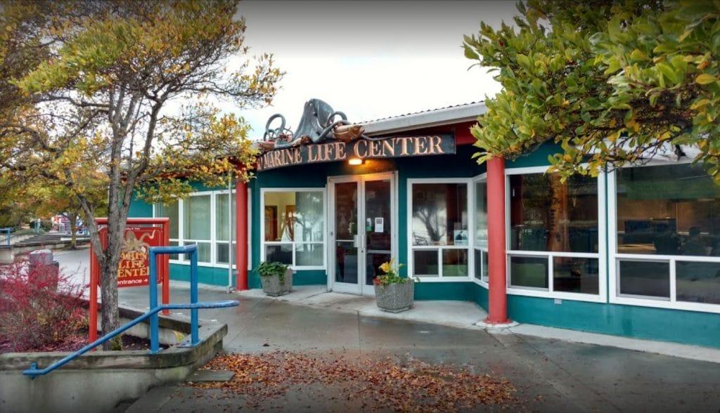 Feiro Marine Life Center